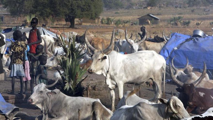 Sudán del Sur se baña de sangre por los robos de vacas