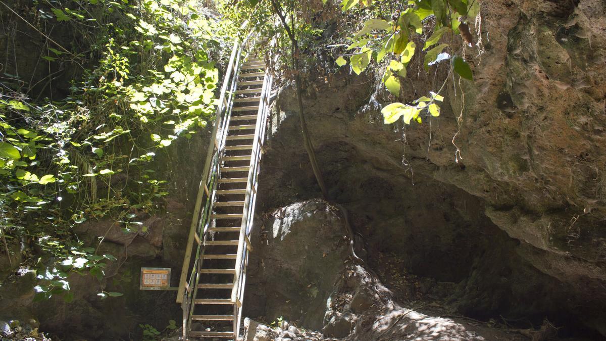 Escaleras en el Barranco del Álamo. Este sendero de Teror se ha convertido en una de las pequeñas rutas de moda en Gran Canaria.