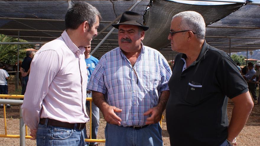 Una cooperativa ligada a Coalición Canaria se contrata a sí misma para distribuir ayudas públicas para la ganadería de arrastre