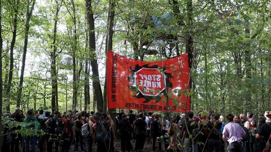 Miles de manifestantes secundan a los activistas alemanes contra las talas de bosques