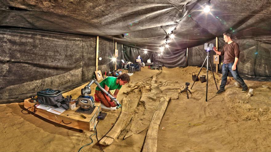 El equipo de digitalización del Smithsonian realiza la captura en 3D de un fósil en el yacimiento de Cerro Ballena, en el desierto de Atacama