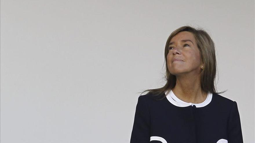 Satse pide una reunión con Ana Mato para tomar medidas que eviten el contagio por ébola