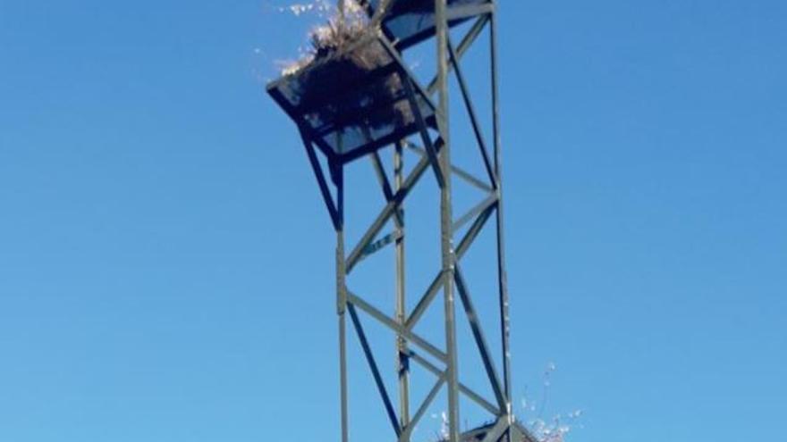Instalación para nido de cigüeñas / Ayuntamiento de Azuqueca