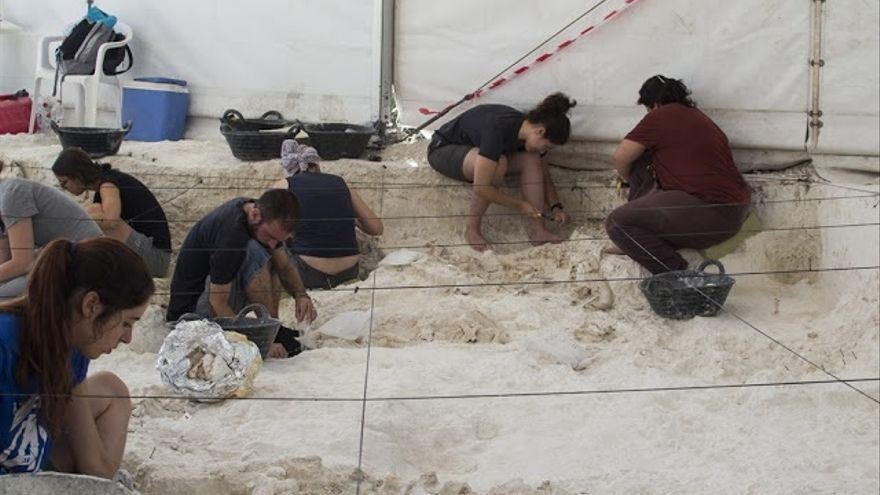 Descubren en Orce 2.700 restos de fauna que ayudarán a conocer la vida de los primeros pobladores de Europa