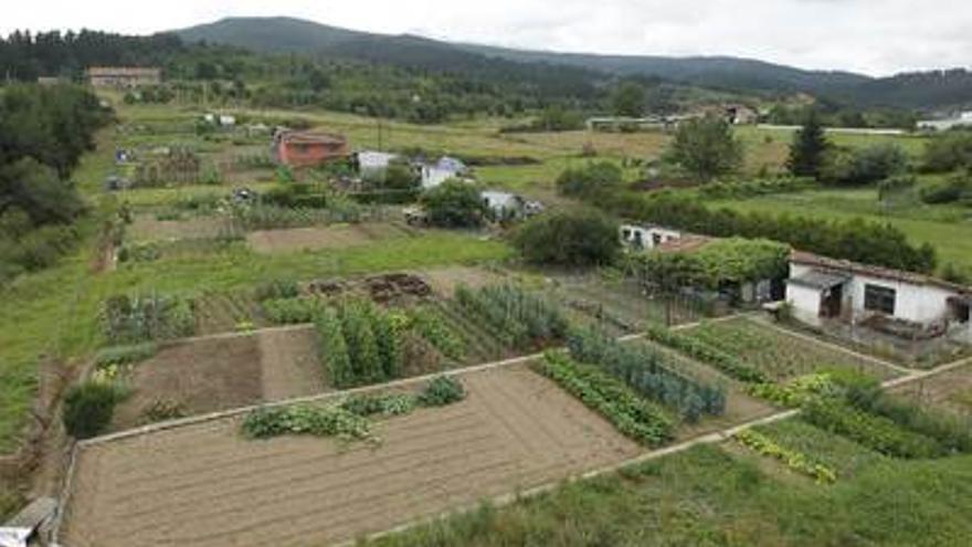 Vista de la zona de Elorrio donde se quiere implantar el polígono industrial, con las huertas ecológicas en primer plano./EDN
