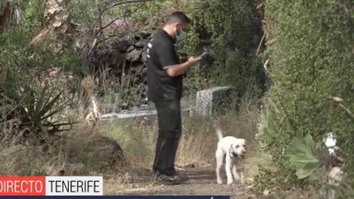 Uno de los perros buscando restos biológicos y de sangre de las niñas en la finca