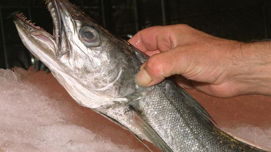 La CE plantea un drástico recorte en las cuotas de pesca de merluza para 2018