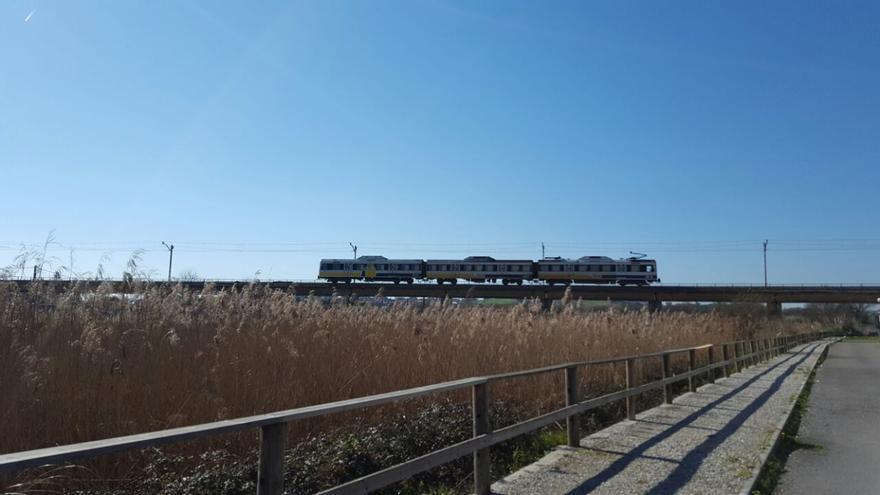 Tren de Feve a su paso por la red cántabra.