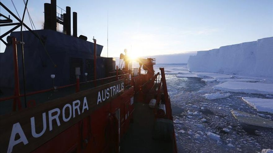 Un grupo de científicos rastrearán ballenas azules con sonoboyas en la Antártida
