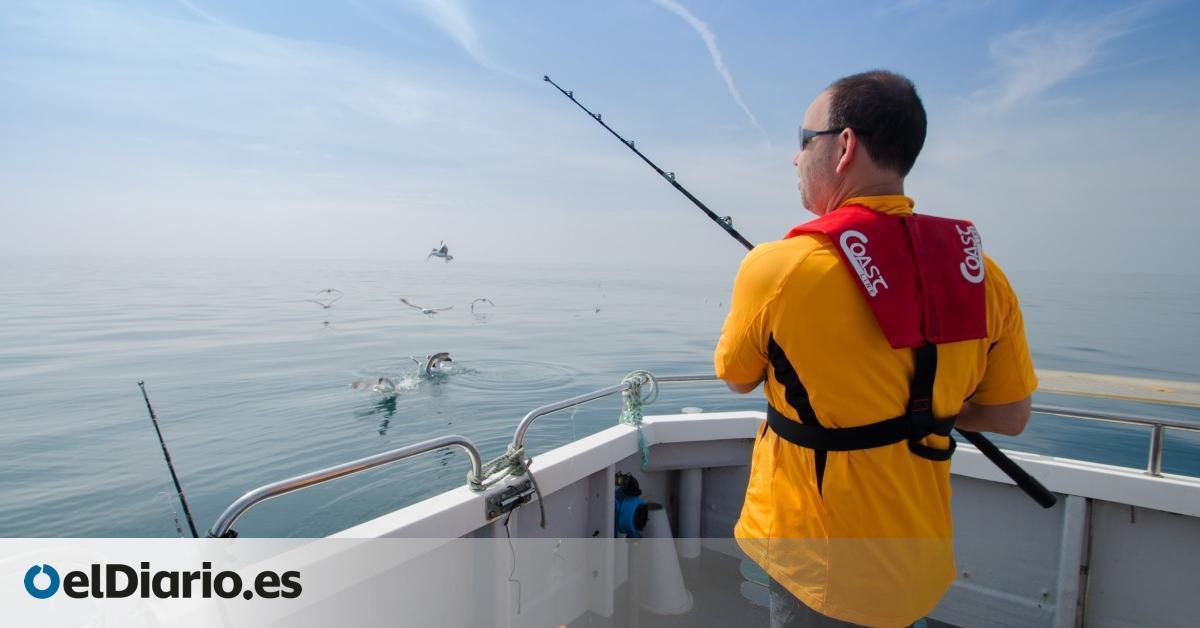 La Pesca Recreativa Limitada A Puntos Específicos En La Propuesta Del Parque
