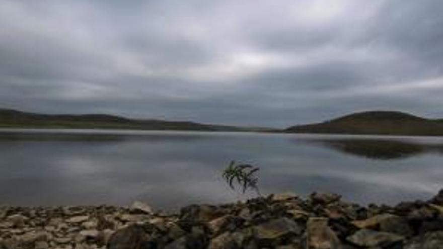 Los regantes de Torre de Abraham, Gasset y Vicario sufrirán reducción en el riego mientras que el resto de la cuenca mantendrá la normalidad