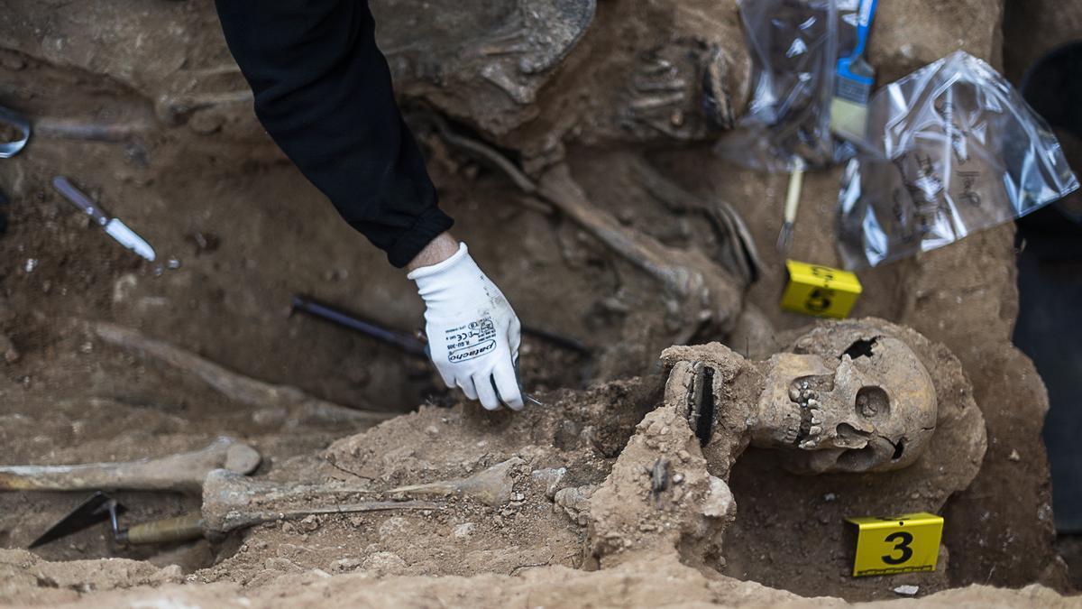 Exhumación en la fosa 3 de Guadalajara
