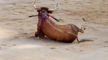 El toro se derrumba durante el llamado 'tercio de muerte'.
