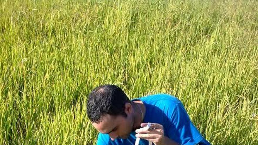 La reducción de agua también reduce la degradación de lo suelos