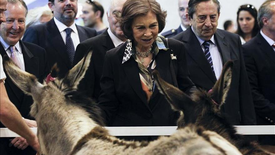 """La Reina entrega el trofeo """"S.M. el Rey al Mejor Ejemplar"""" canino a un Carlino"""