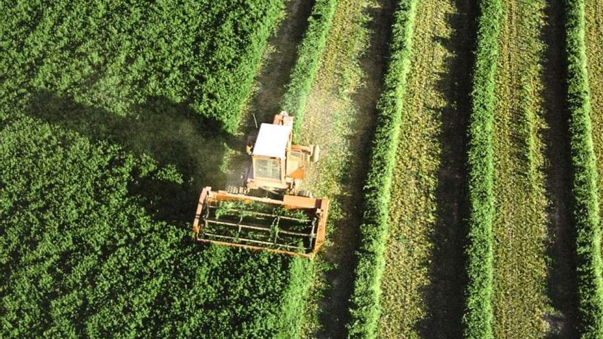 Maquinaria trabajando en el campo