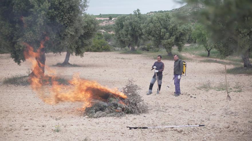 Un índice diario determinará la autorización o prohibición del uso del fuego en Aragón