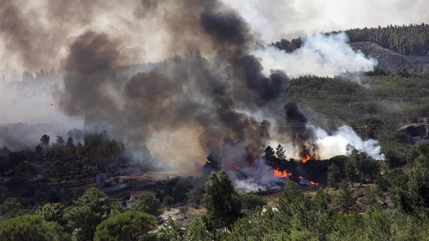 Portugal, el cuarto país del mundo con mayor pérdida forestal en este siglo