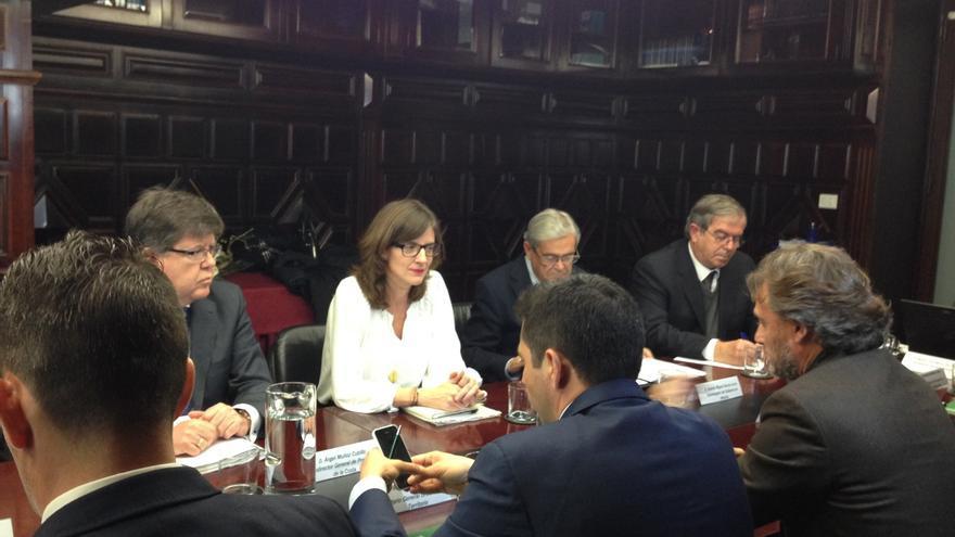 La comisión para demoler el Algarrobico acuerda elaborar un plan de actuación que estará aprobado en abril