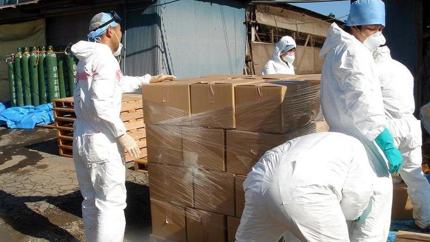 Hallados nuevos casos de gripe aviar en un zoo del centro de Japón