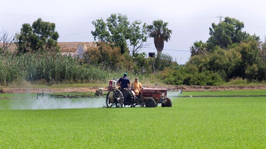 Regiones piden que la reforma de la PAC garantice más retribución a los agricultores