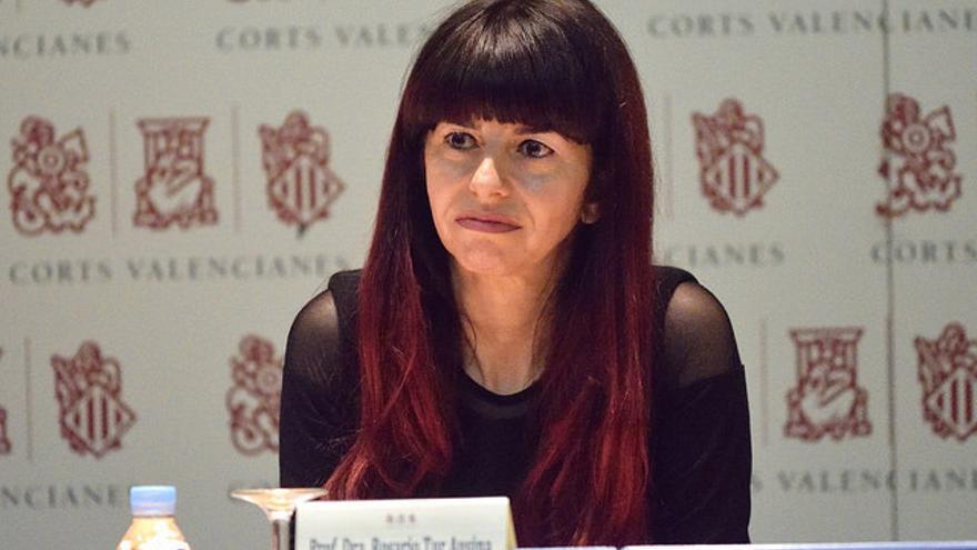 La profesora del máster de Cifuentes y pareja de Álvarez Conde, Rosario Tur, en el seminario celebrado en las Corts.