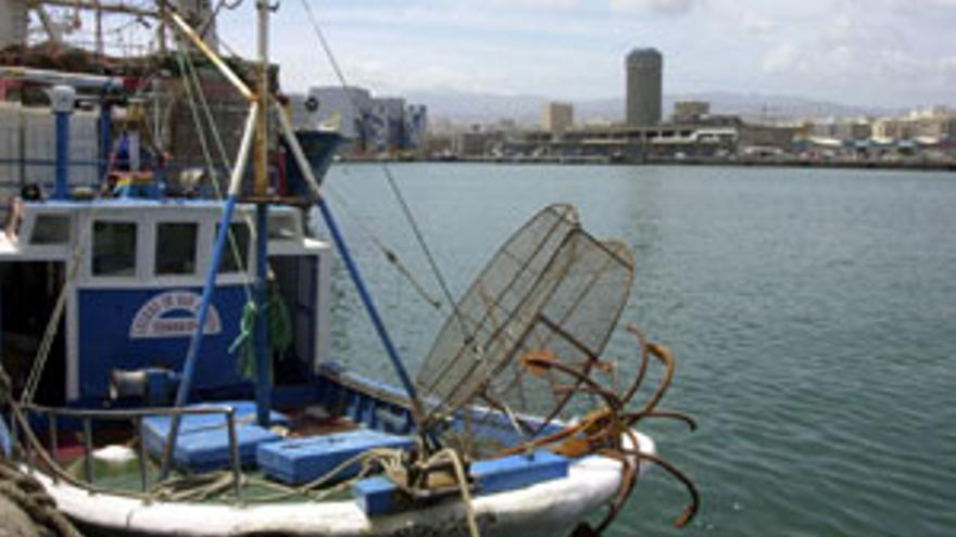 Buque pesquero en el puerto de La Luz y de Las Palmas. (CANARIAS AHORA)