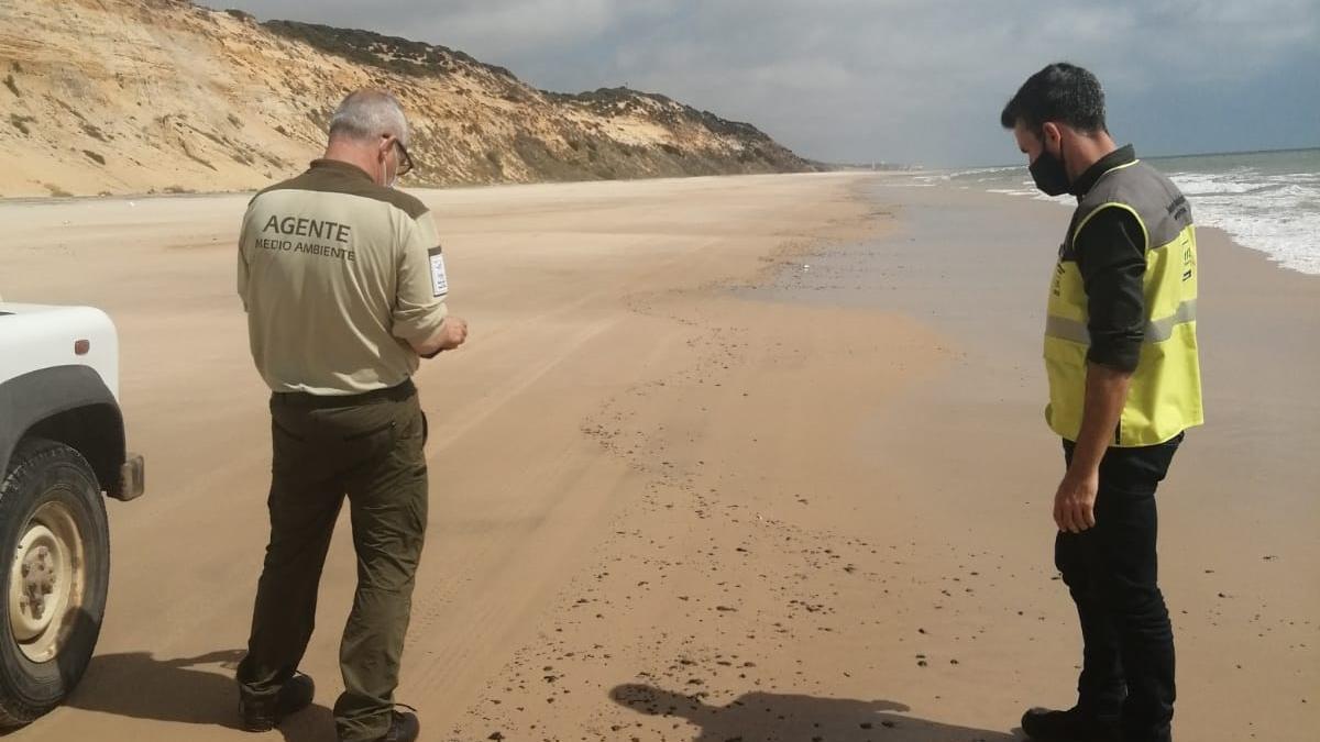 Activado el plan de emergencia por manchas de hidrocarburo en el litoral de Huelva