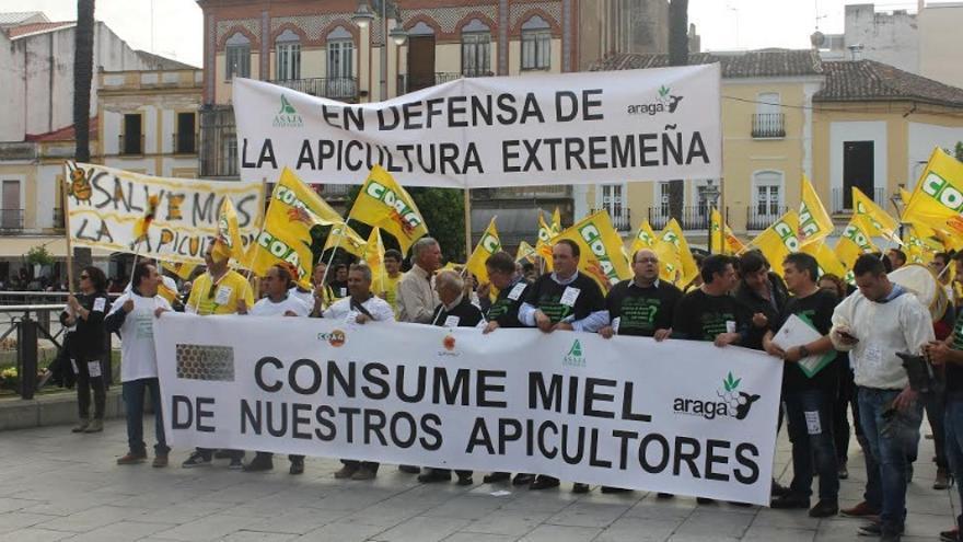 """Denuncian que se envasan mieles procedentes de países de países como China """"sin garantías"""""""