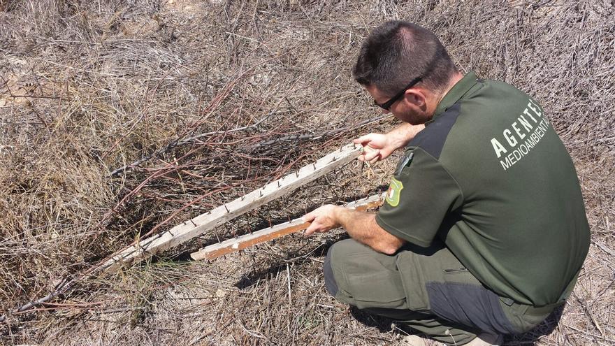 Un agente medioambiental muestra una trampa de clavos en un camino