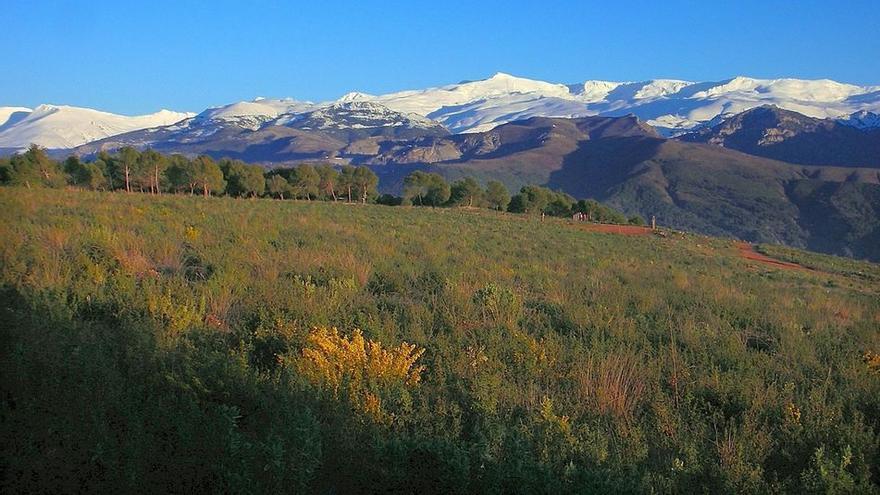 Sierra Nevada está perdiendo sus hielos perpetuos