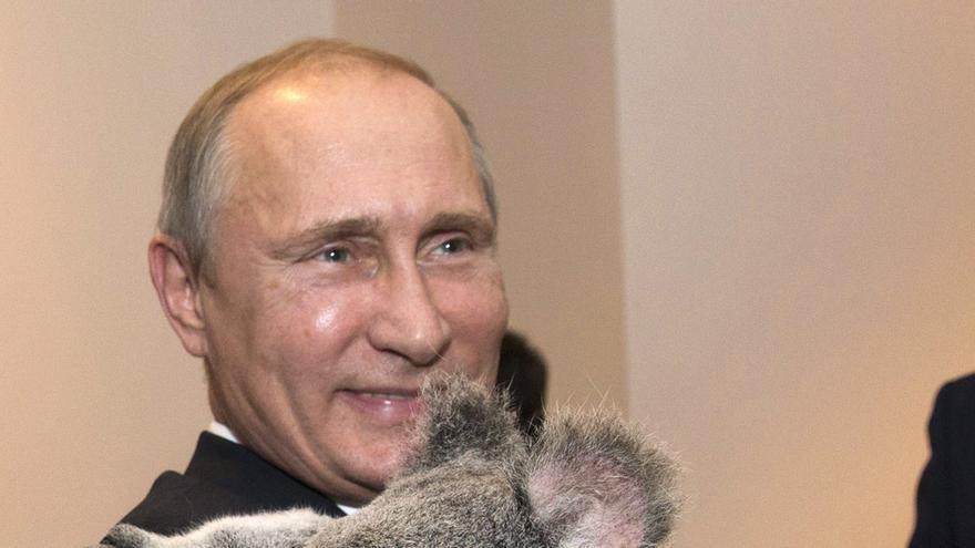 Putin sostiene a Jimbelung, el koala protagonista de la cumbre del G20 en Australia / FOTO: Bestimages