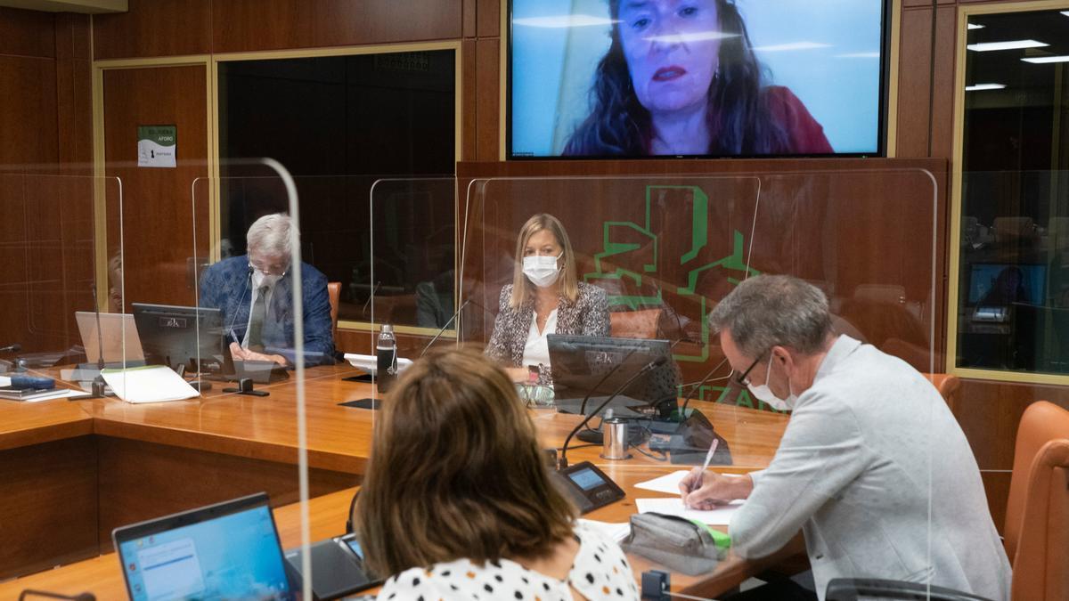 La consejera de Salud, Gotzone Sagardui, interviniendo por Zoom en el Parlamento Vasco