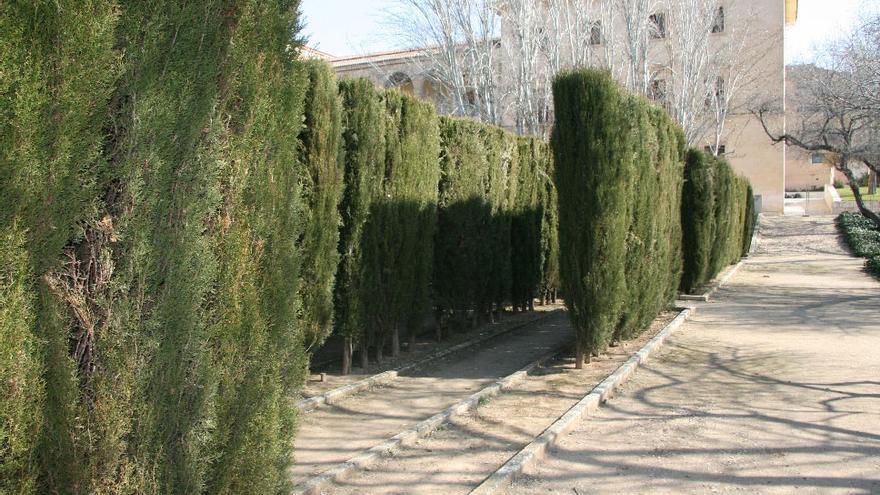 Laberinto en los jardines del Infantado