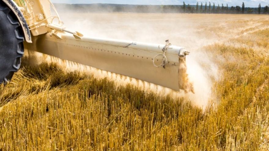 """COAG-A pide a la Junta más presupuesto para la incorporación de jóvenes y el """"relevo generacional"""" en el sector agrario"""