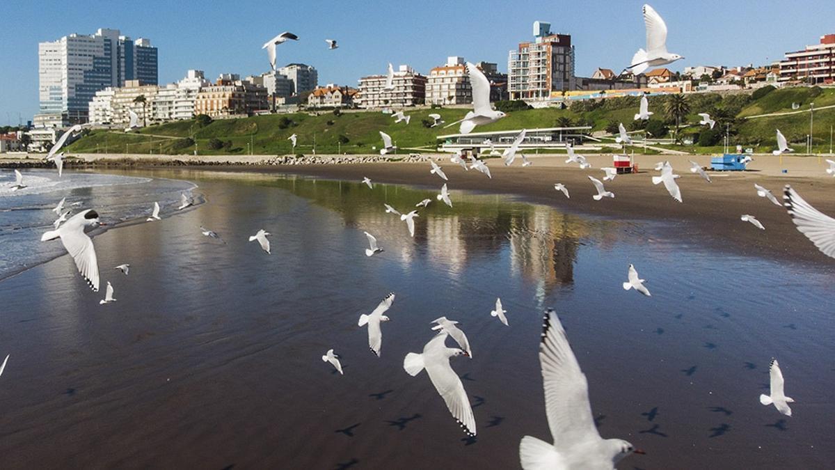 Mar del Plata, una de las ciudades más visitadas estas vacaciones de invierno