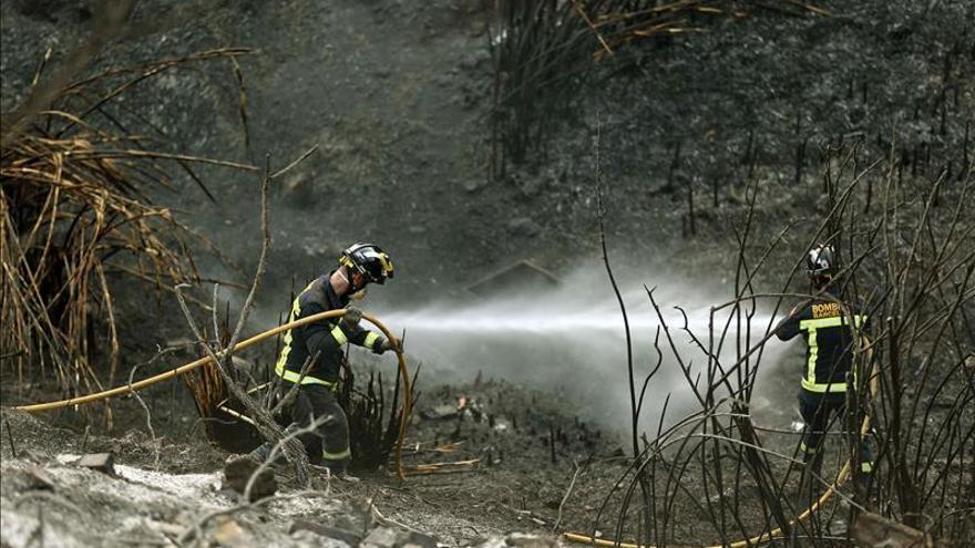 Los Bomberos logran controlar el incendio de Collserola (Barcelona)