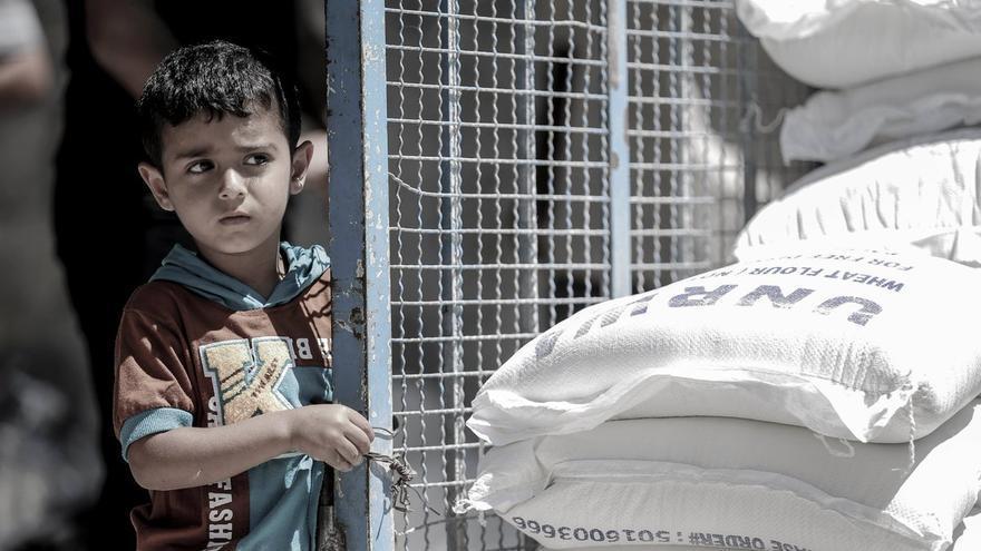El  80% de la población de Gaza depende de la ayuda humanitaria.