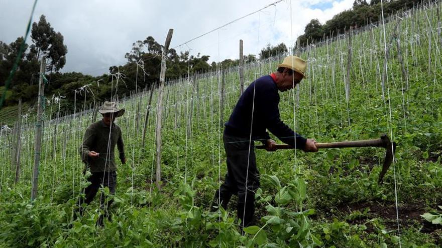 Aprender ecología y finanzas, lo que cambia la vida a campesinos colombianos