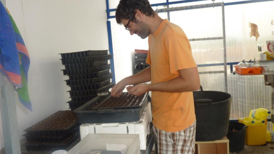 Uno de sus trabajadores sembrando a mano los planteles