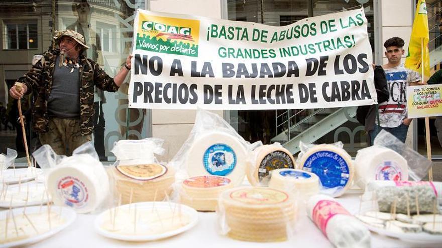 Denuncian que las grandes empresas pagan menos que las queserías locales a los ganaderos