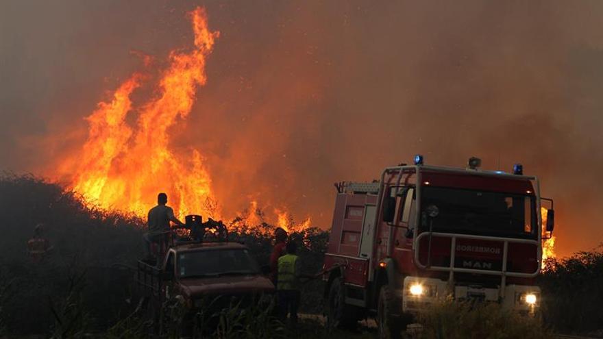 Más de 1.000 bomberos combaten cuatro grandes incendios en Portugal