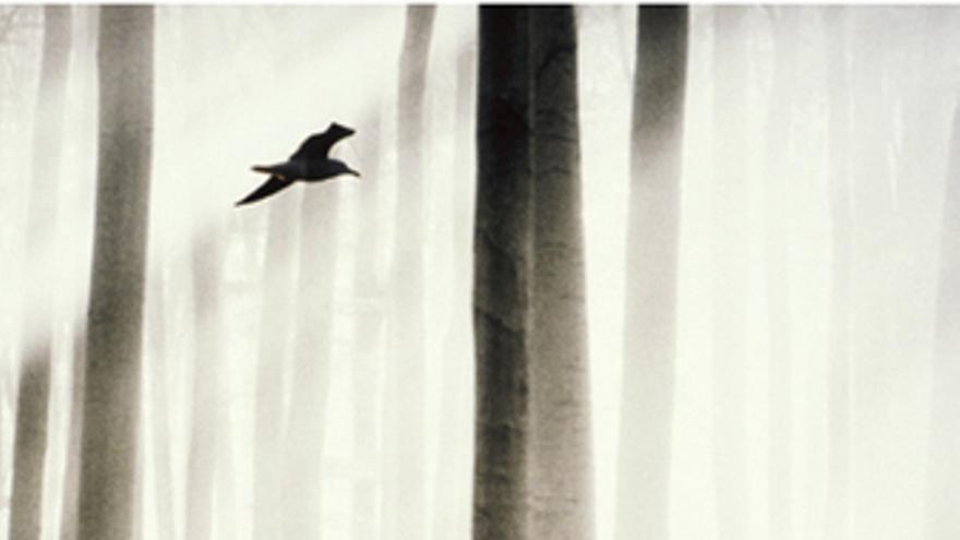 Jirí Kratochvil presenta la novela 'En mitad de la noche un canto'