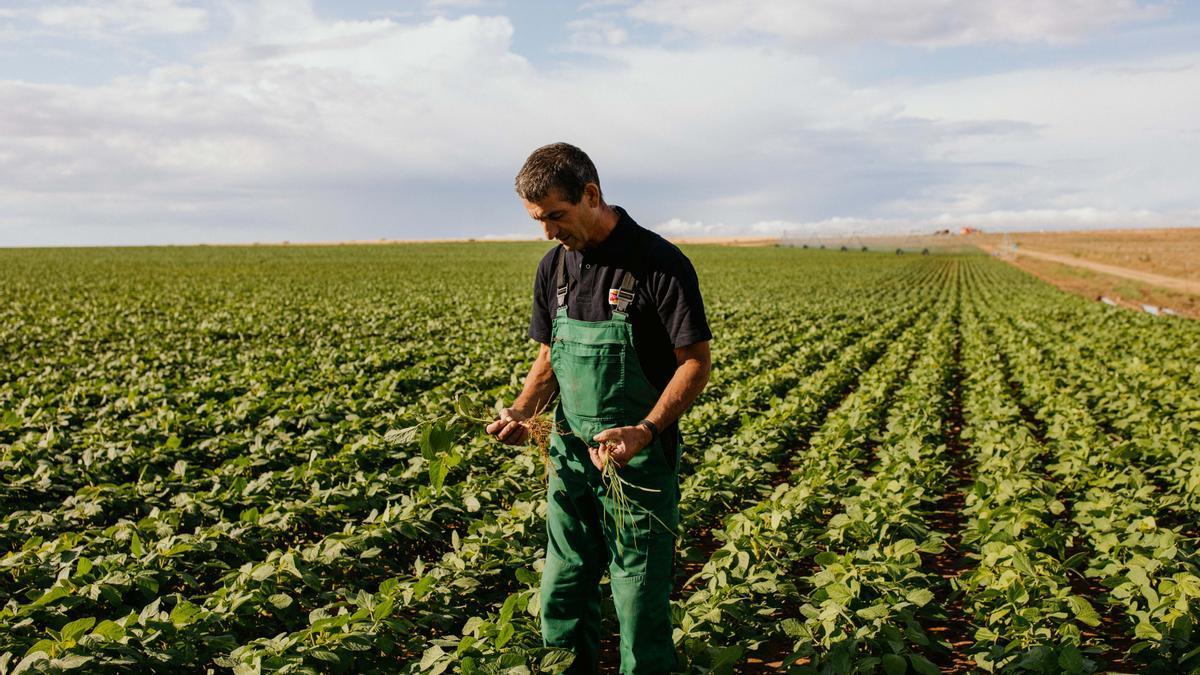 Un agricultor.