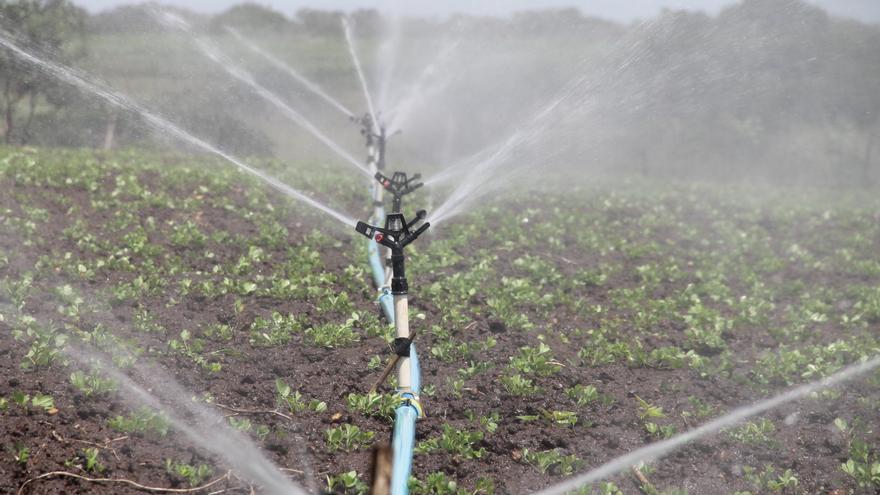 En 2016, se utilizaron 2.032 hectómetros cúbicos de agua de riego en Aragón