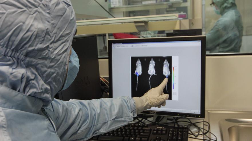 Investigación de un fármaco contra el cáncer en la Universidad de Granada
