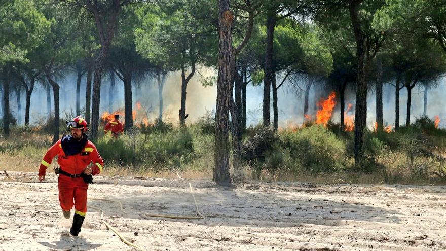 El equipo de la UME trabaja para apagar el fuego