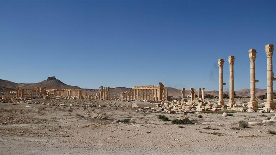 Siria mantiene a salvo el 99% de su patrimonio pero alerta a los coleccionistas