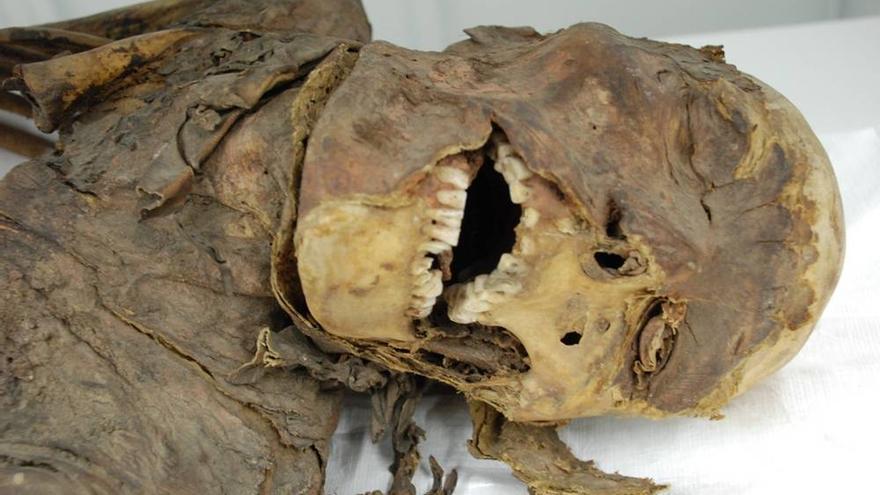 Una de las nuevas momias de los fondos del museo tinerfeño.