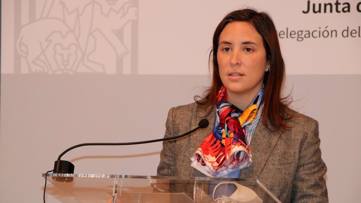 Cristina Casanueva, delegada de Cultura y Patrimonio Histórico de la Junta.